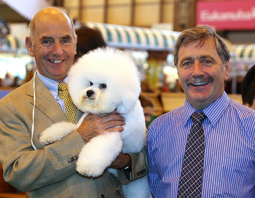 Dog handler Michael Corish, Eric - the winning pooch, and owner Michael Coad, from Longton. [Image: onEdition]