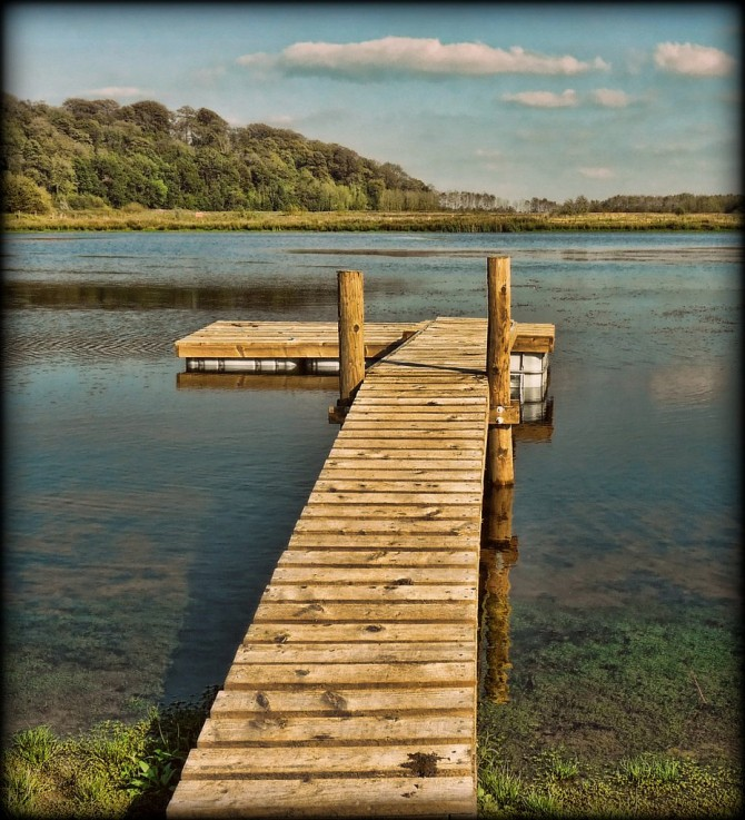 brockholes nature reserve pier
