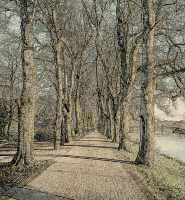 Path by the River Ribble in Avenham Park
