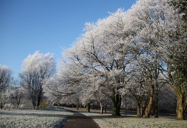 Moor Park pictured with a dusting of snow in December 2010