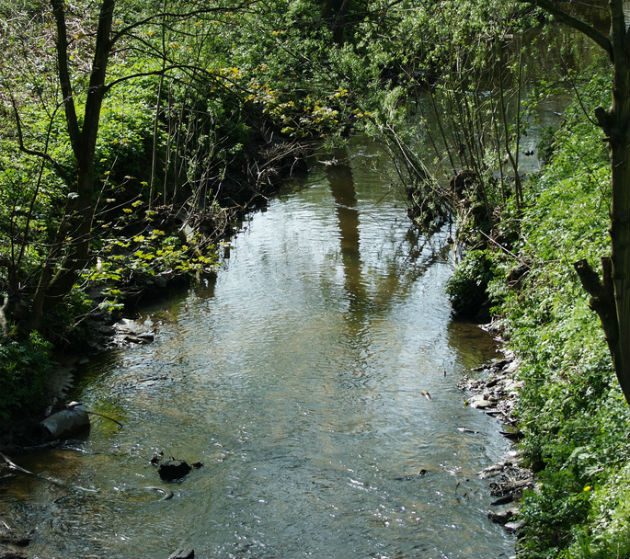 A section of Savick Brook in cleaner times