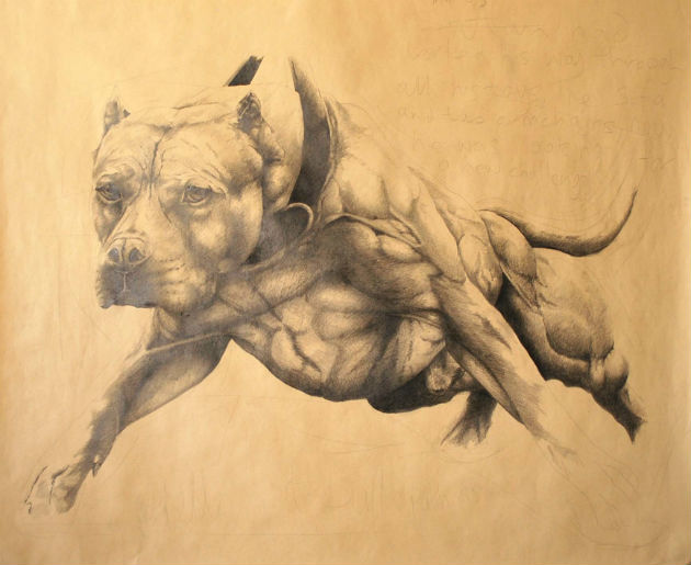 Marley, by Gary Wiggins, was being exhibited at the Harris as part of a Devil Dogs showcase