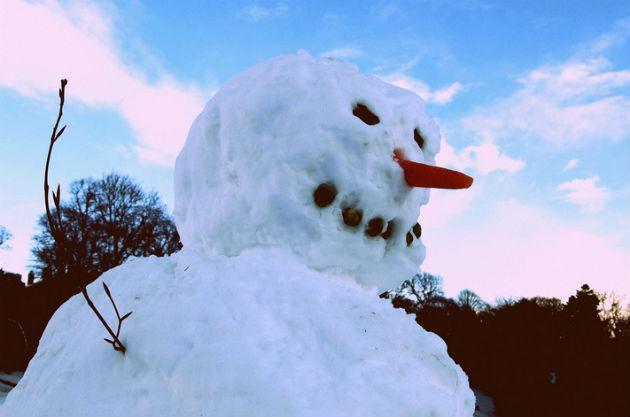snowman630