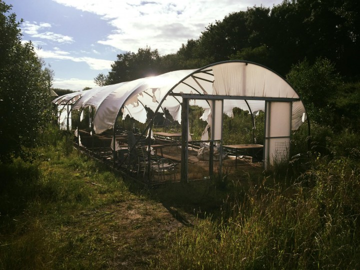 The shell of the polytunnel which will need repairing Pic: Bill Aspin
