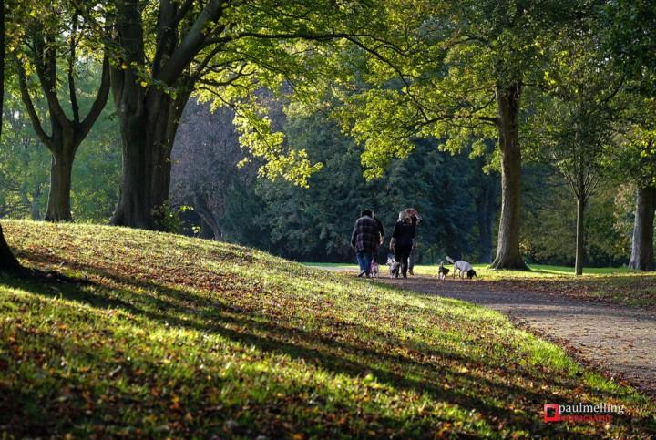 A stroll in Moor Park Pic: Paul Melling