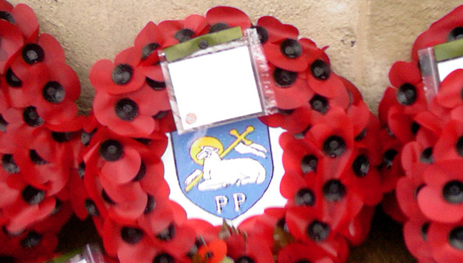 poppies on remembrance sunday