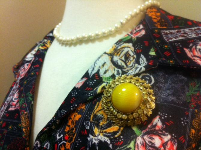 pdsa retro dress and broach