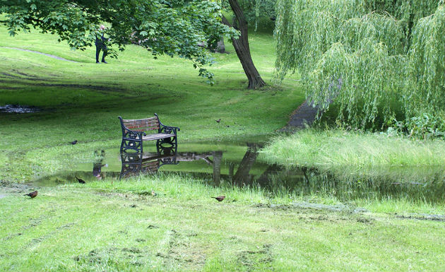 Flooding has been an issue in Winckley Square, and restoration work include planting new trees should help