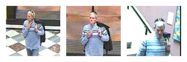 CCTV images showing a man entering and leaving the gallery