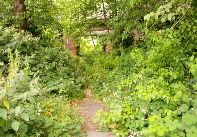 Discovering the former Preston to Longridge railway line