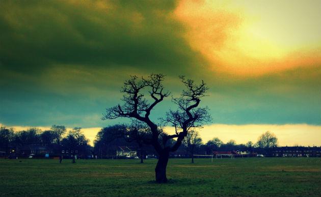 ashton-park630