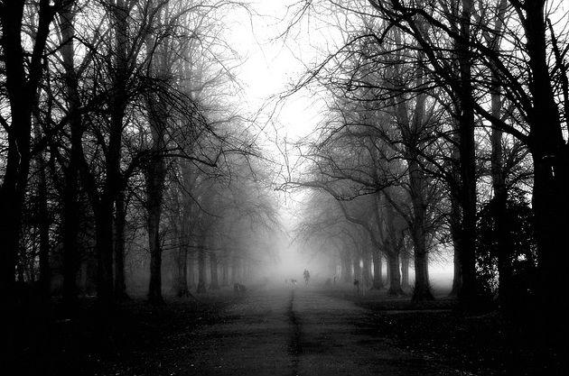 haslam-spooky630