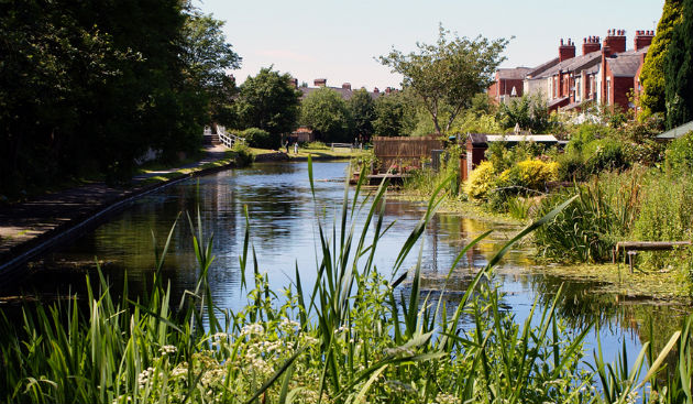 Shelley Road homes which back onto the Lancaster Canal