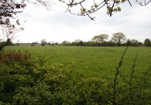 Green fields under threat from development