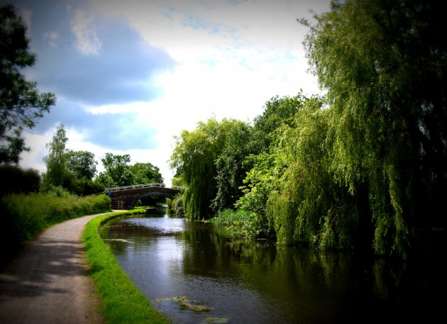 Summer on the Lancaster Canal