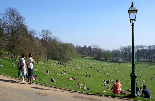 This counts as a quiet day when the sun shines on Avenham Park