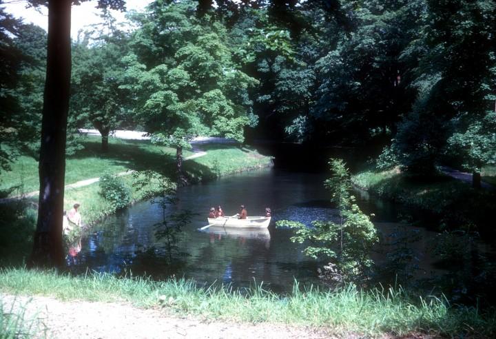 Larkhill Lake and Wood 1965