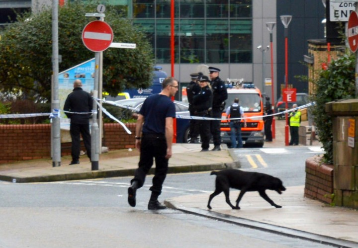 A sniffer dog in action in Butler Street Pic: Tony Worrall